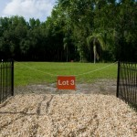 Real Estate Investing: Why Buying Raw Land Can Be an Excellent Long-Term Strategy