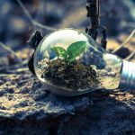 4 Important Reasons Why You Should Consider Buying A Green Home